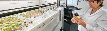 sektor medyczny leki apteki szpitale
